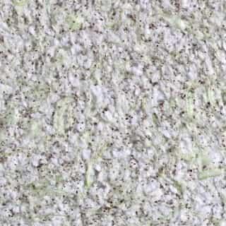 ZHidkie-oboi-Bioplast-8643