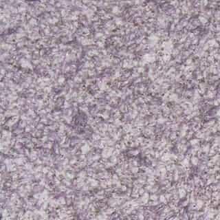 ZHidkie-oboi-Bioplast-8673
